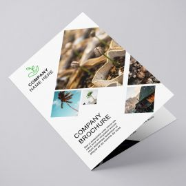 Brochures A4 (A3 folded to A4)